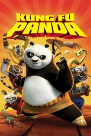 Kung Fu Panda 1 (2008) dublat în română