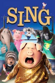Sing – Hai să cântăm! (2016) dublat în română