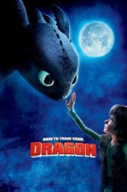 Cum să îţi dresezi dragonul 1 (2010) dublat în română