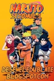 Naruto Sezonul 1 Dublat în Română