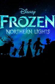 LEGO Regatul De Gheață: Aurora Boreală Dublat în Română