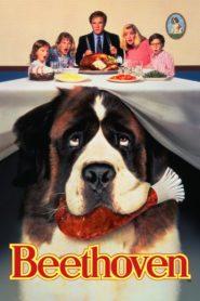 Beethoven 1 – Un Câine puţin prea mare (1992) online subtitrat