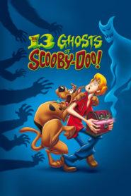 Cele 13 Fantome Ale Lui Scooby-Doo Sezonul 1 Dublat în Română