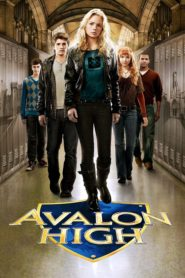 Liceul Avalon (2010) dublat în română