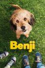 Benji (2018) online subtitrat