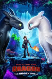 How to Train Your Dragon 3: The Hidden World (2019) dublat în română