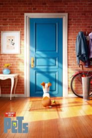 The Secret Life of Pets (2016) dublat în română