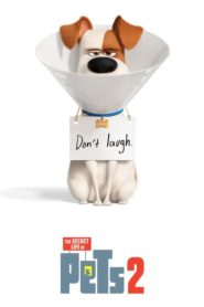 The Secret Life of Pets 2 (2019) dublat în română