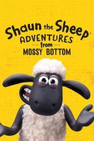 Mielul Shaun: Aventuri la fermă Sezonul 1 Dublat în Română