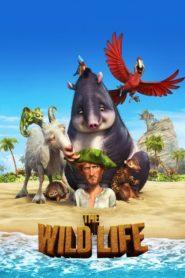 Robinson Crusoe (2016) dublat în română
