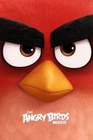 Angry Birds (2016) dublat în română