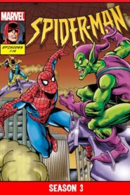 Spider-Man 1994 Sezonul 3 Dublat în Română