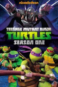 Ţestoasele Ninja 2012 Sezonul 1 Dublat în Română