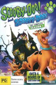 Scooby-Doo și Scrappy-Doo Sezonul 1 Dublat în Română
