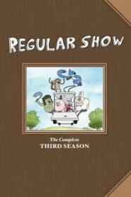 Un Show Obișnuit Sezonul 3 Dublat în Română