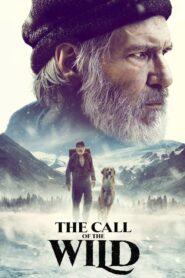 Chemarea străbunilor (2020) online subtitrat