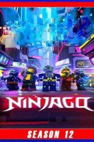 LEGO Ninjago: Maeștrii Spinjitzului Sezonul 12 Dublat în Română